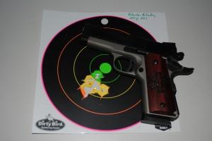 230 gr FMJ, 8-shot string at 30 feet.